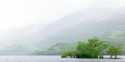 Ecosse, west highland way, un îlot boisé sur le loch Lomond par temps brumeux