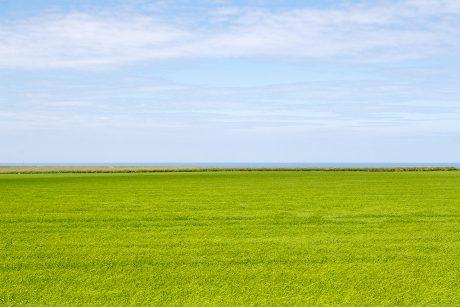 Paysage de bord de mer en Normandie